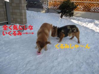 2009 2 28 hirokami3