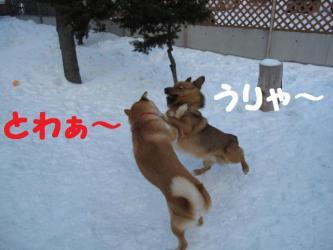 2009 2 28 hirokami4