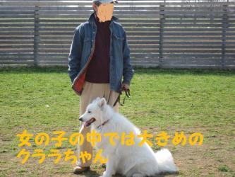 2009 4 29 ofukai10