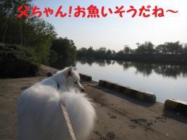 2009 5 16 kawa1