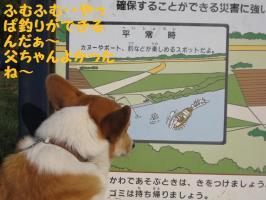 2009 5 16 toyohira3