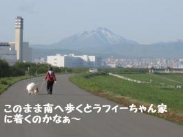 2009 5 16 toyohira4