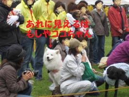 2009 5 24 wanwan1