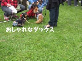 2009 5 24 wanwan3