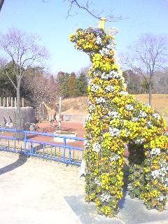20070216113851