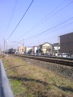20090215001306