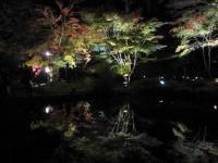 11月3日・松島 029 (2)