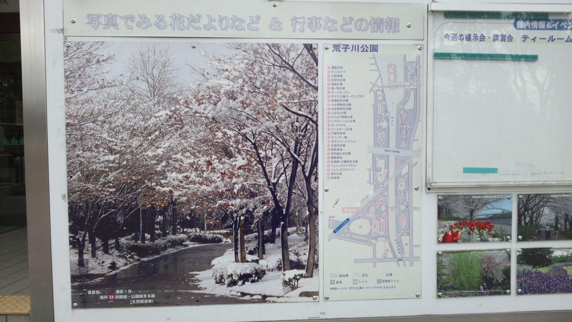 arakogawa12.jpg