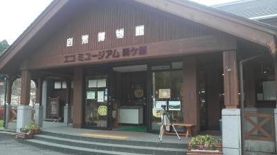 ecosekigahara02.jpg
