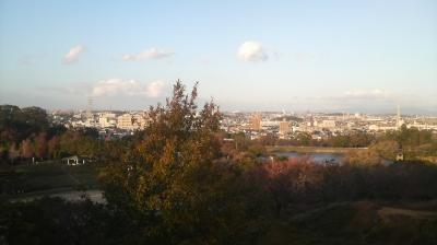ootakaryokuchi16.jpg
