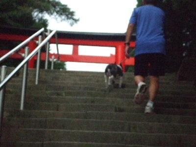 2009_0814鹿児島0036