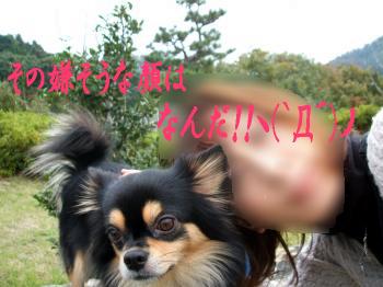 鯉太郎@出会い7