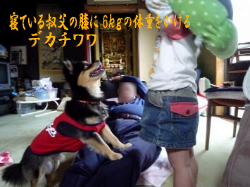 鯉太郎@お祭り2