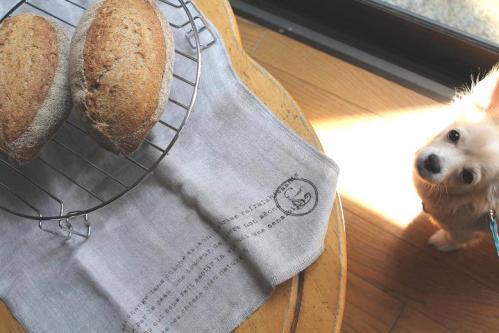 20100502ライ麦パンを狙うミルク