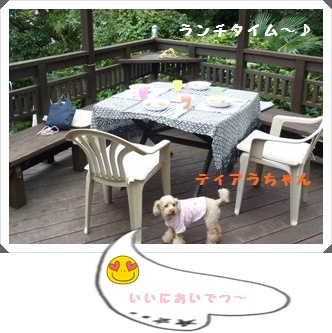 017_20111219143257.jpg