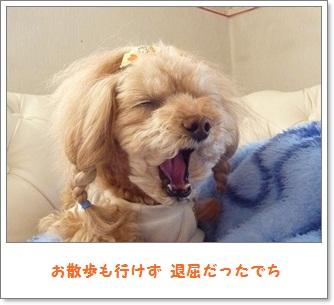 042_20120223103759.jpg