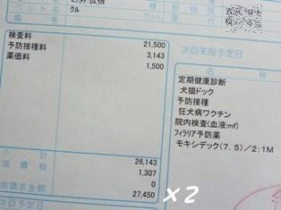 045_20110521152803.jpg