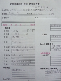 057_20110521152803.jpg