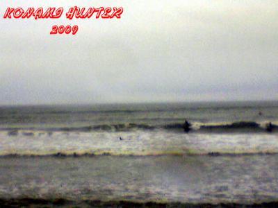 31日 日曜 チバキタの波