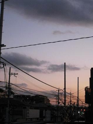 20090106y.jpg