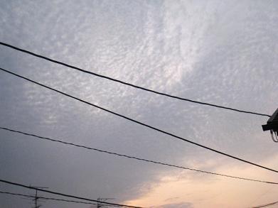 20090228u1.jpg