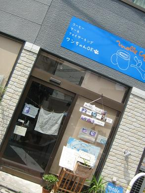 20090831r7.jpg