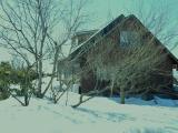 家の周辺 これでも積雪量は半分になったと…!!