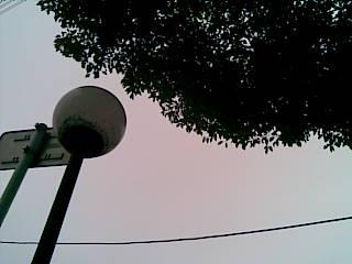 20091113.jpg
