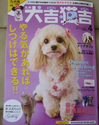①犬吉猫吉