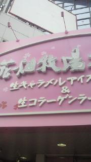 NEC_0285.jpg
