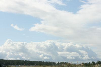 【抱っこ展2】ワクワク雲