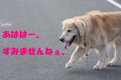 bu-30600001.jpg