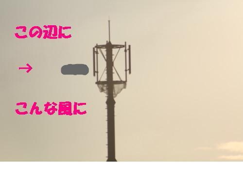 snap_kosugimon_2009949535.jpg