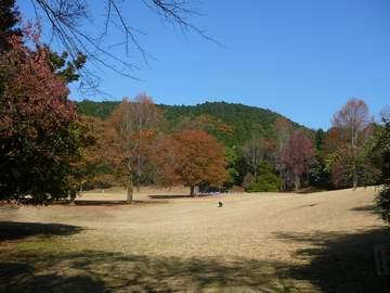 広域公園 1
