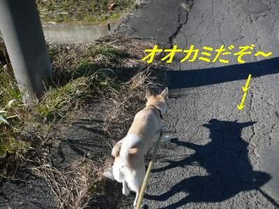 すず散歩 036