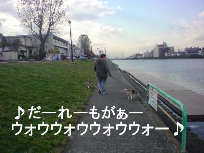 浜田省吾っぽく