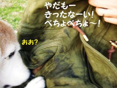 ひぃ散歩 12 きたなーい!