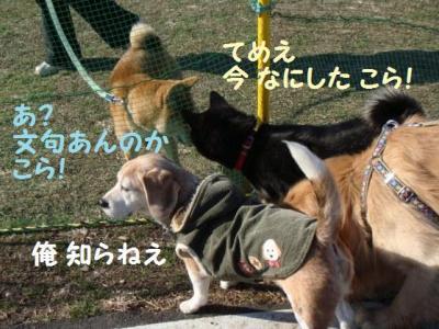 柴祭 9 険悪