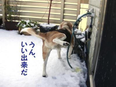 雪 2 かき氷