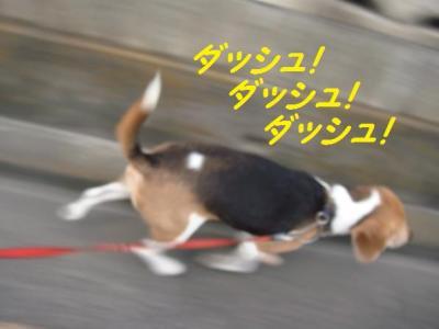 ジュース 7 ダッシュ!
