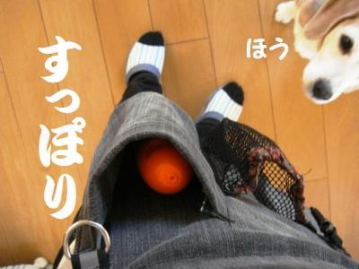 伊藤さん 5 水用ポッケ
