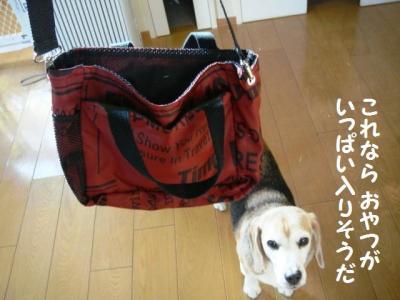 伊藤さん 11 赤いバッグ