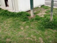 草刈り 1 前 ロッカー