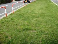 草刈り 4 後 道