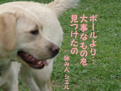 ラスト 8 恋する乙女