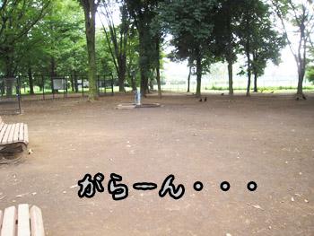 090802-2.jpg