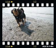 [film01012455]pora-3