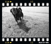 [film01012427]pora-3