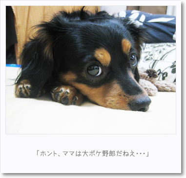 [photo23091172]090723-2