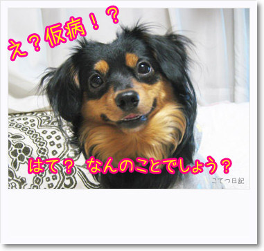 [photo24233588]090724-1